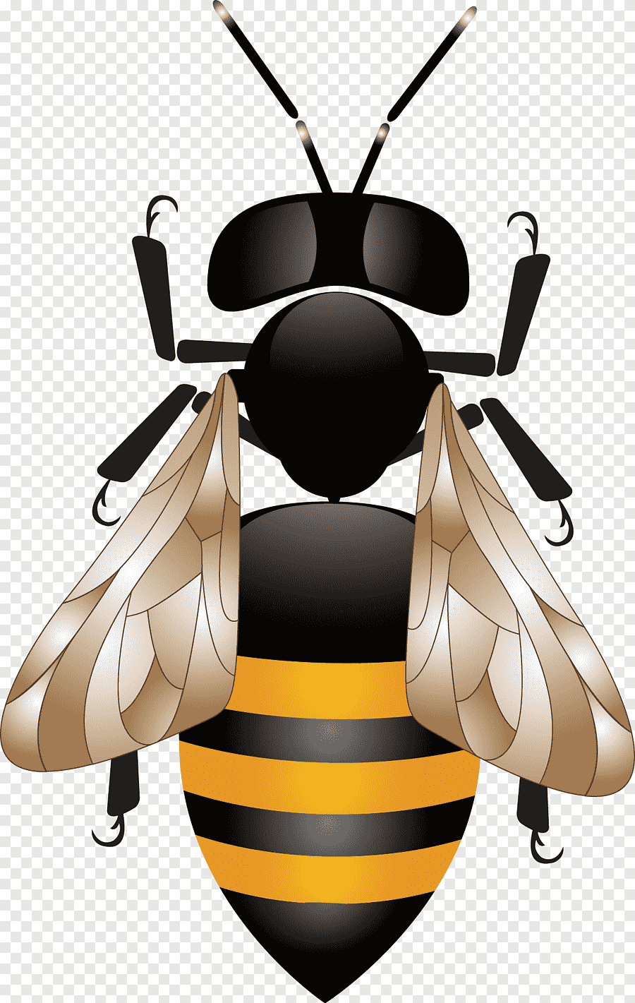 Sarang Tawon Vector : sarang, tawon, vector, Illustration,, Honey, Honeycomb, Beehive, Pattern,, Nest,, Animals,, Happy, Birthday, Vector, Images, PNGEgg