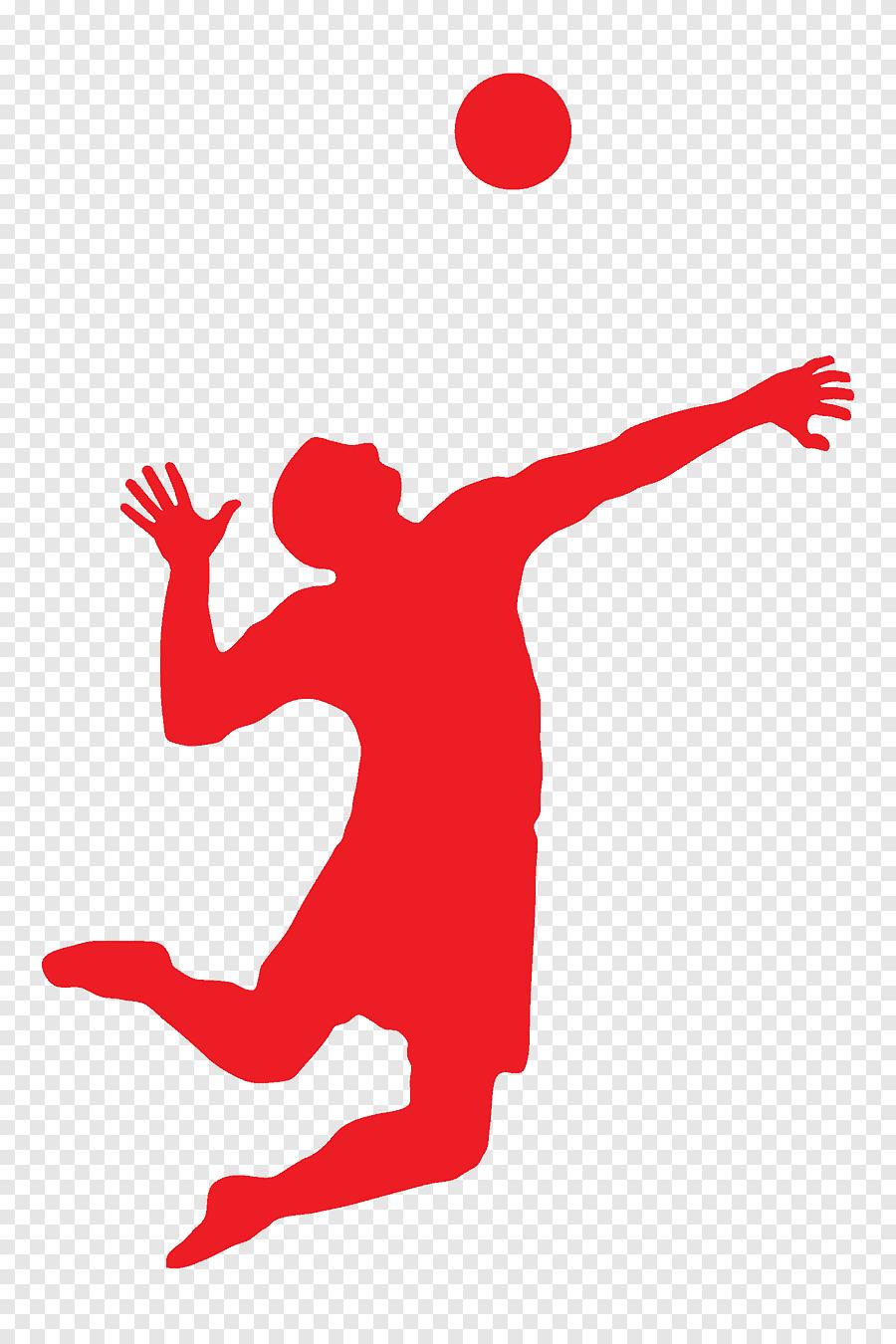 Gambar Bermain Voli : gambar, bermain, Wallyball,, Orang-orang, Bermain, Voli,, PNGEgg
