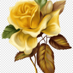 Rose Painting Yellow Flower Hd Hand Painted Oil Painting Flowers Watercolor Painting Flower Arranging Png Pngegg