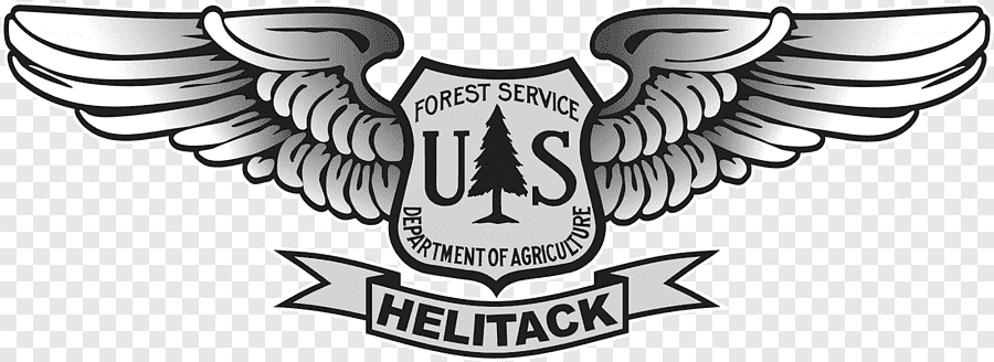 In all that time until the early 197. United States Forest Service Smokey Bear United States National Forest Logo Fire Forest Emblem Logo Png Pngegg
