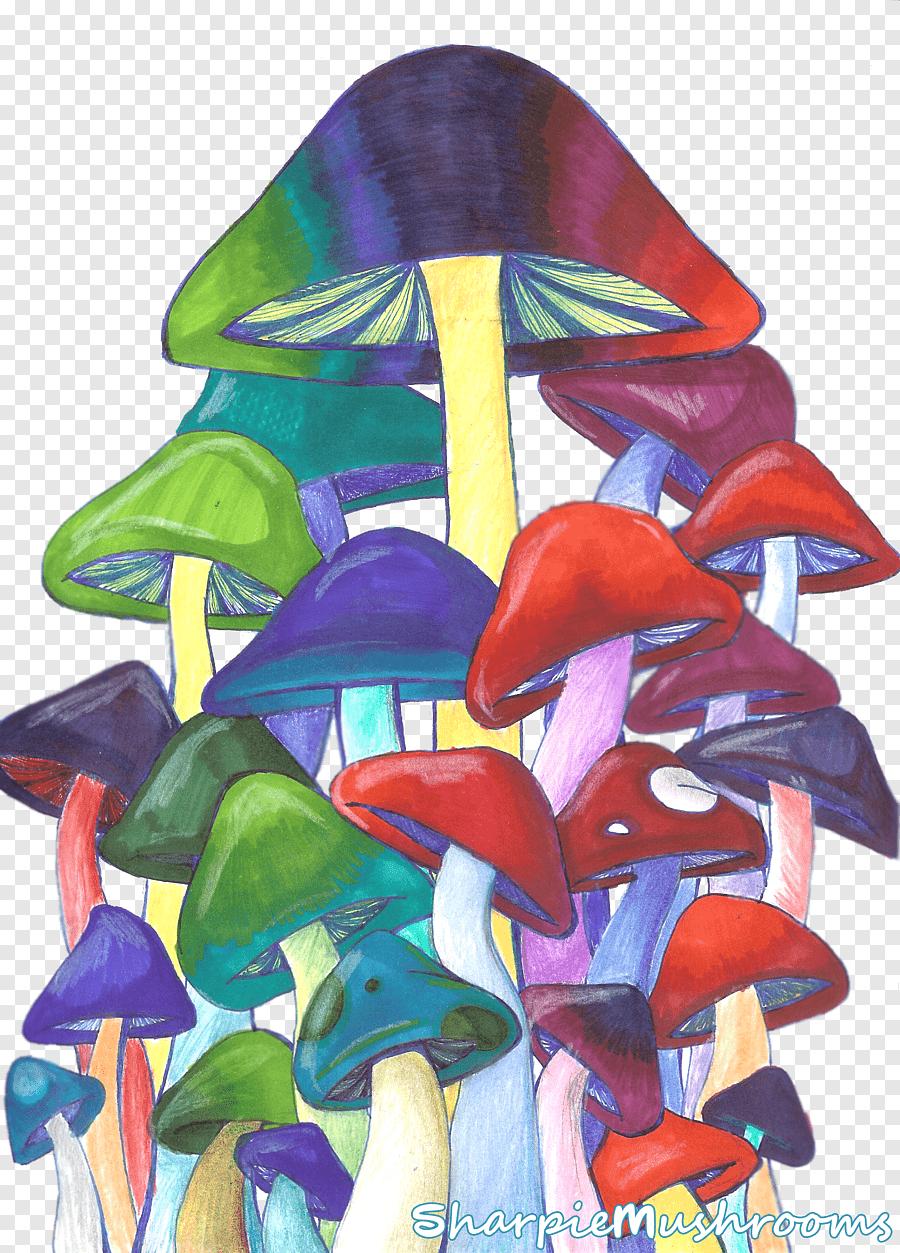 Trippy Mushroom Drawing : trippy, mushroom, drawing, Edible, Mushroom, Psilocybin, Magic, Mushrooms, Drawing,, Mushroom,, Purple,, Pencil, PNGEgg