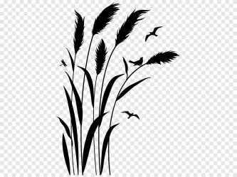 Twig Grasses Plant stem Leaf Silhouette Leaf white leaf png PNGEgg