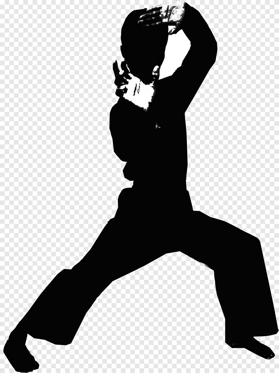 Gambar Logo Pencak Silat : gambar, pencak, silat, Silat, Images, PNGEgg