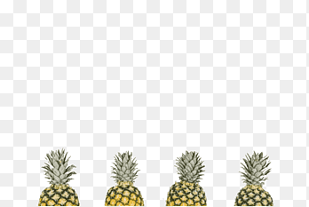 Pineapple Printing png images PNGEgg