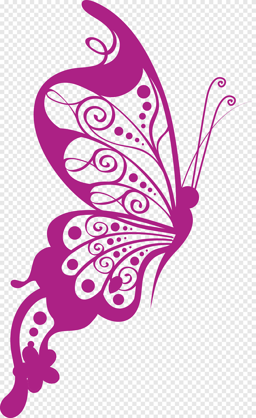Butterfly PNG Images With Transparent Background | Free