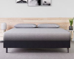Zoma Mattress for Back Pain