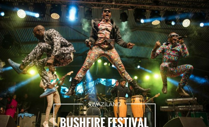 Going to Swaziland's Bushfire Festival? Read this!