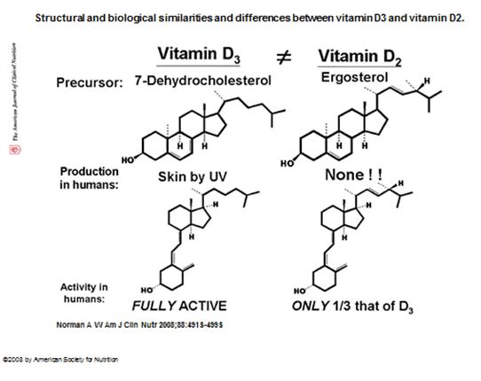 EagleBio Spotlight: Vitamin D | Eagle Biosciences