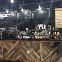 """The Seed"" Coffee Shop Sprouts in Boca Raton"