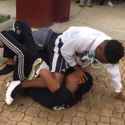 Four students arrested after lunchtime altercation.