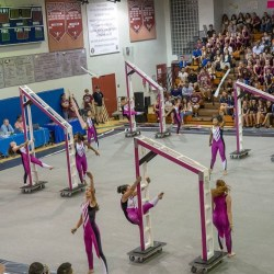 Winter Guard team places third at SFWGA championship