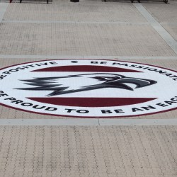 "Saying Goodbye. The class of 2019 had an emblem of the eagle logo that reads ""Be Positive, Be Passionate, Be Proud to be an Eagle"" painted in the courtyard as their gift to the school. It is an MSD tradition for the graduating class to donate a personalized gift to beautify the campus. Photo courtesy of Dawson Corea"