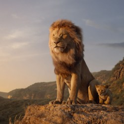 A still from 'The Lion King.' (Disney/TNS)