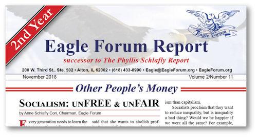 November 2018 Eagle Forum Report