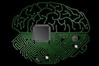 Silicon Immortality
