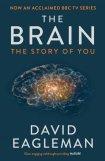 brain paperback UK