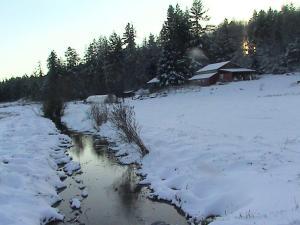 Chimacum Creek on Eaglemount Farms - November 2014