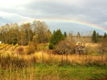 Rainbow over the homestead
