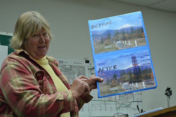 "KRISTIN GERDE holds up a before-and-after picture to demonstrate how the reduced height of the pro-posed cell tower would still block the view of Mount Adams to the north. Gerde, who lives at the end of Rocky Road, said her 5-acre property ""would be in the literal shadow of the tower,"" causing a reduction in her property's value."