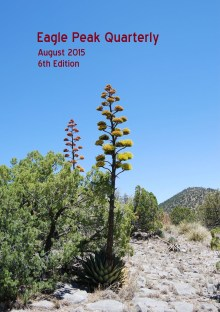 August 2015 Eagle Peak Quarterly cover