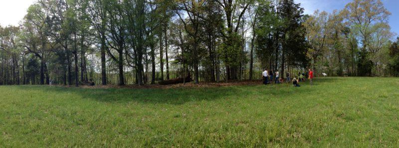 Dyer Ridge Clearing