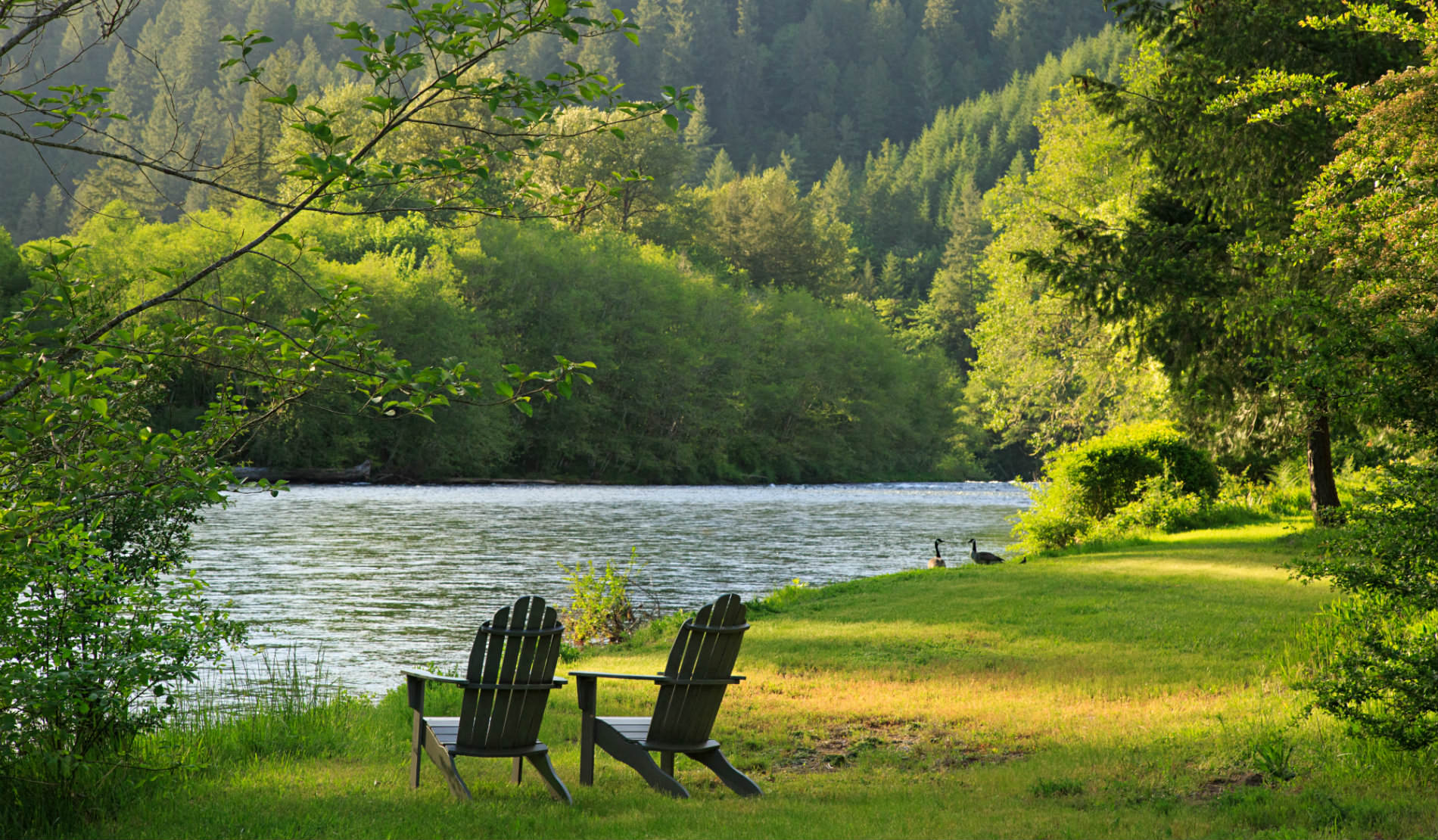 new river adirondack chairs yoga posture the chair eagle rock lodge romantic lodging on mckenzie