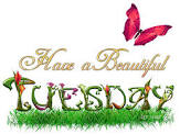 Have a Beautiful Tuesday