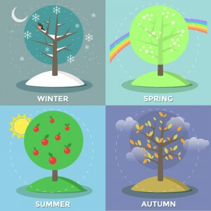 Four seasons vector illustration - preview