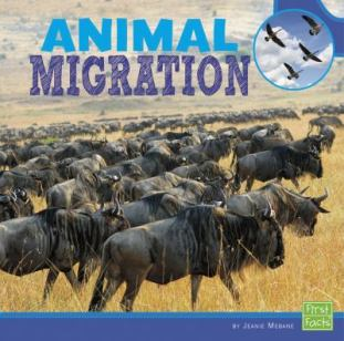 Animal Migration by Jeanie Mebane