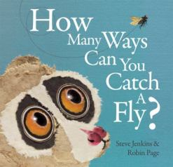 How Many Ways Can You Catch a Fly? by Steve Jenkins
