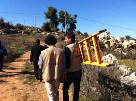 19.11.15, Bethlehem - Khallet Zakariya, EAs provided protective presence during the olive harvest, Photo EAPPI /D.Daut