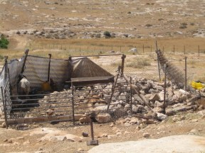 A demolished livestock pen. EAPPI/S. Ntombeni. 20.06.16