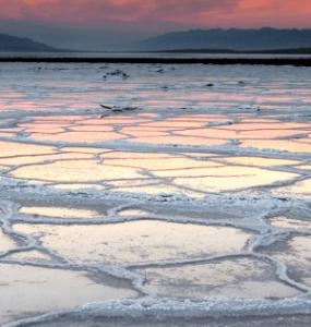 Льды Берингова моря