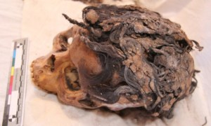 Hair Extensions Found On Ancient Egyptian Woman Who Died More Than 3K Years Ago