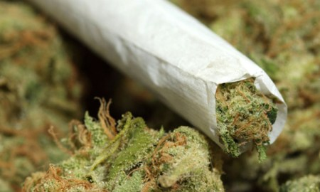 Jamaica Forges It's First $100 Million Dollar Marijuana Deal With Canadian Company