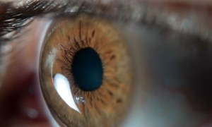 Medical Technology: Blind Woman Can Now See After Receiving Stem Cell Treatment