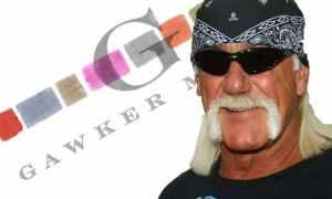 Hogan vs Gawker