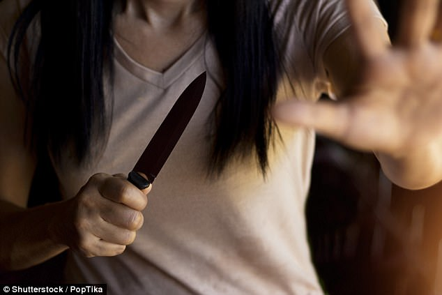 mother stabs boyfriend