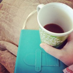 The Unblemished Journal
