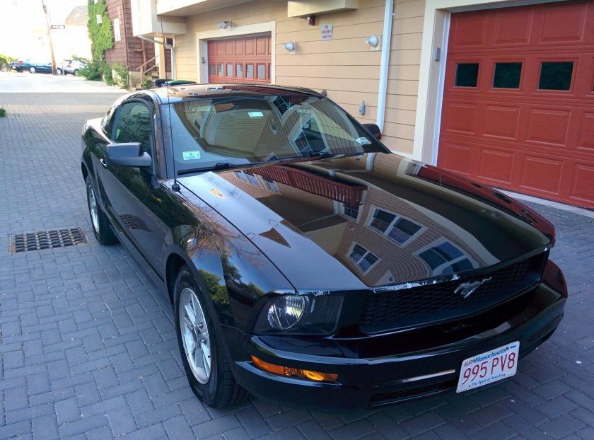 Amerika'da Son Bir Buçuk Yıl Mustang
