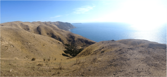 The view from the peak of our hike with Kapiti Island just offshore.