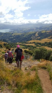 A beautiful day spent hiking in the hills of Akaroa