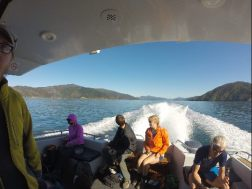 A view of the sounds off the back of the water taxi