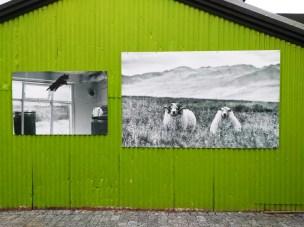 3 Reykjavik Haus Fotos