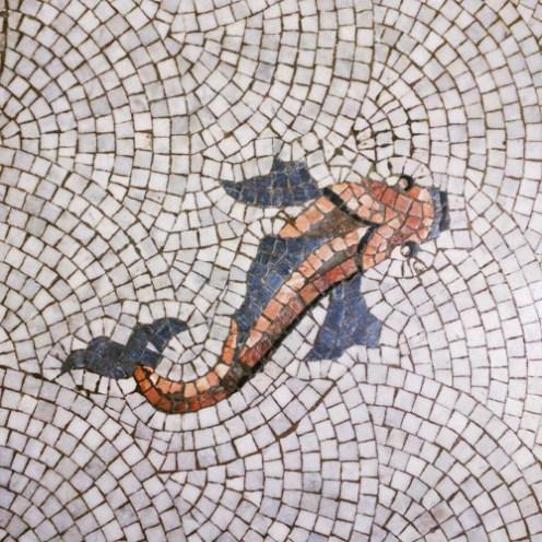 Victoria Baths Fisch 1