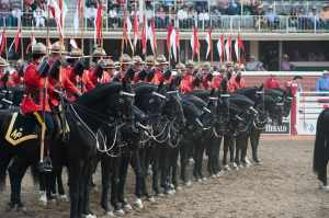 加拿大皇家骑�表演 Photo Credit: Shane Kuhn / Calgary Stampede