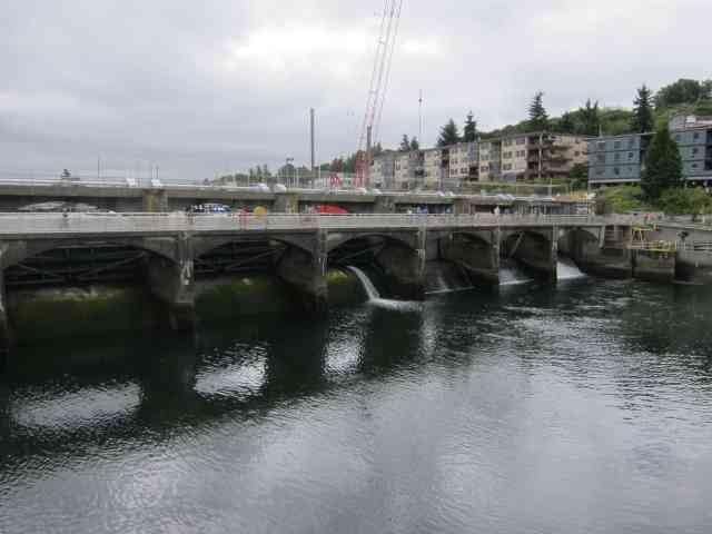 dam ballard locks seattle