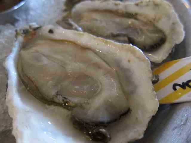 oyster westward seattle 2