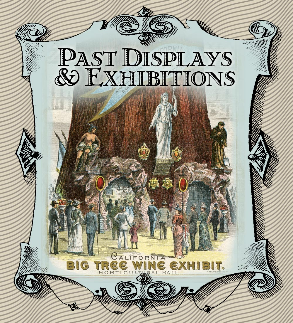 Gallery - Past Displays