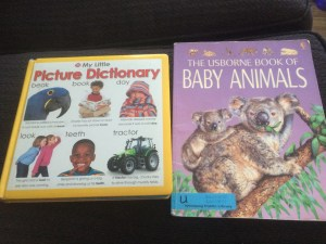 Kids Dictionary and Encyclopedia